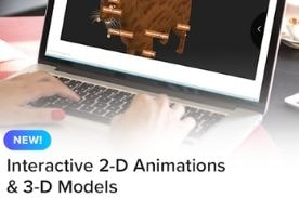 person using computer with text 'interactive 2-D animations & 3-D models.'