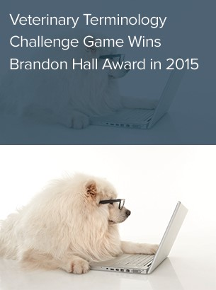 Veterinary Terminology Challenge Game Wins Brandon Hall Award