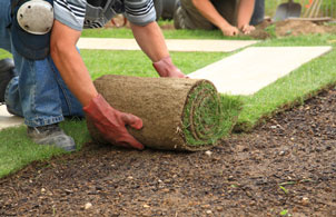 Online landscaping technology design