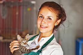 Skills for a Vet Practice